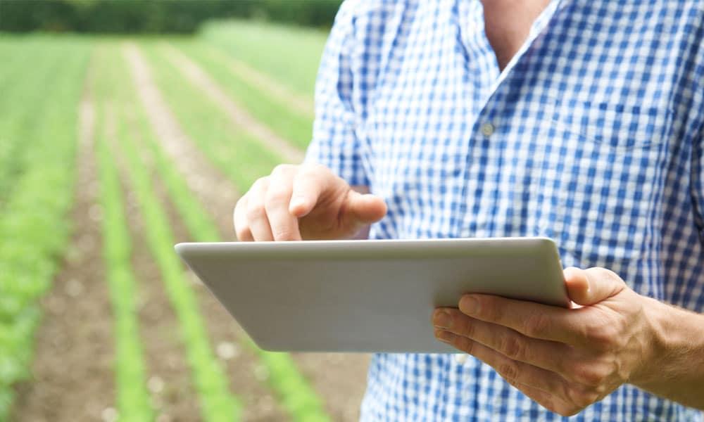 El presente de la Comunicación y el Marketing Agrícola