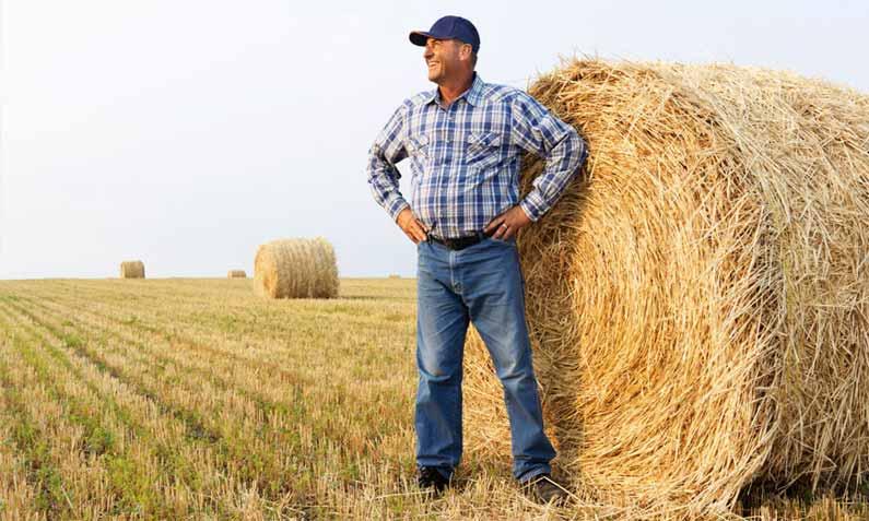 Las habilidades directivas en el sector agrícola (I)